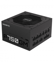 Gigabyte P750GM 750W 80 Plus Gold Power Supply [TFW]